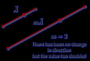 Vector Multiplication by Scalar